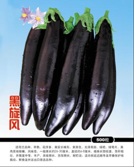 农雷竞技官方网址 黑旋风